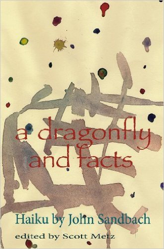 dragonfly_and_facts